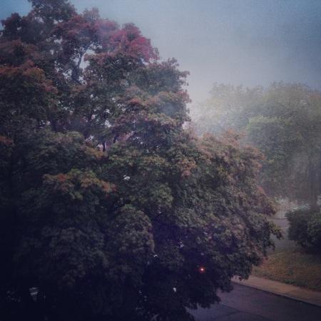 Good foggy fall morning.